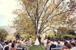 Wedding Image-9